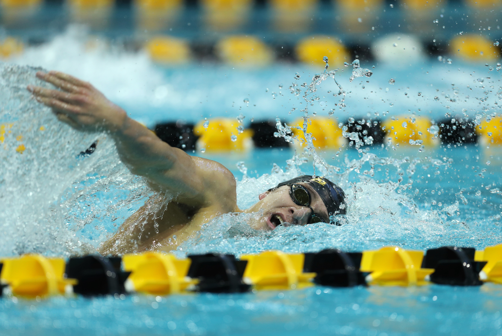Iowa's Michael Tenney swims the 500 yard freestyle Thursday, November 15, 2018 during the 2018 Hawkeye Invitational at the Campus Recreation and Wellness Center. (Brian Ray/hawkeyesports.com)