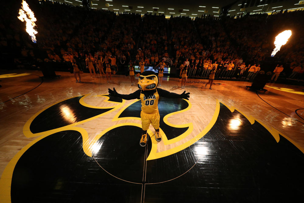 Herky against the Wisconsin Badgers Friday, November 30, 2018 at Carver-Hawkeye Arena. (Brian Ray/hawkeyesports.com)