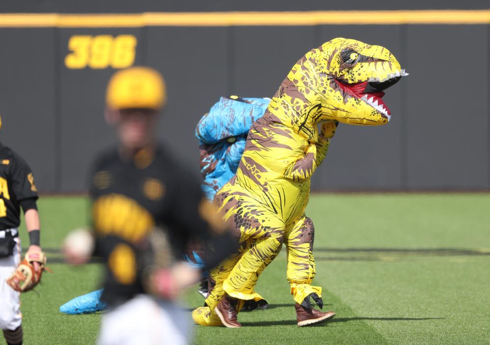 The Iowa Baseball T-Rex Race against California State Northridge Sunday, March 17, 2019 at Duane Banks Field. (Brian Ray/hawkeyesports.com)