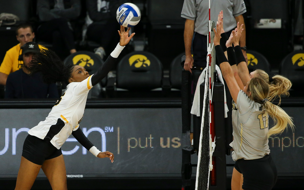 Iowa Hawkeyes outside hitter Taylor Louis (16) sets the ball over the net during a game against Purdue at Carver-Hawkeye Arena on October 13, 2018. (Tork Mason/hawkeyesports.com)