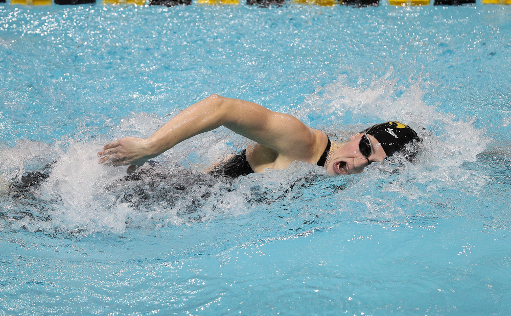 Iowa's Kelly McNamara competes in the 800-yard freestyle relay during the third day of the Hawkeye Invitational at the Campus Recreation and Wellness Center on November 16, 2018. (Tork Mason/hawkeyesports.com)