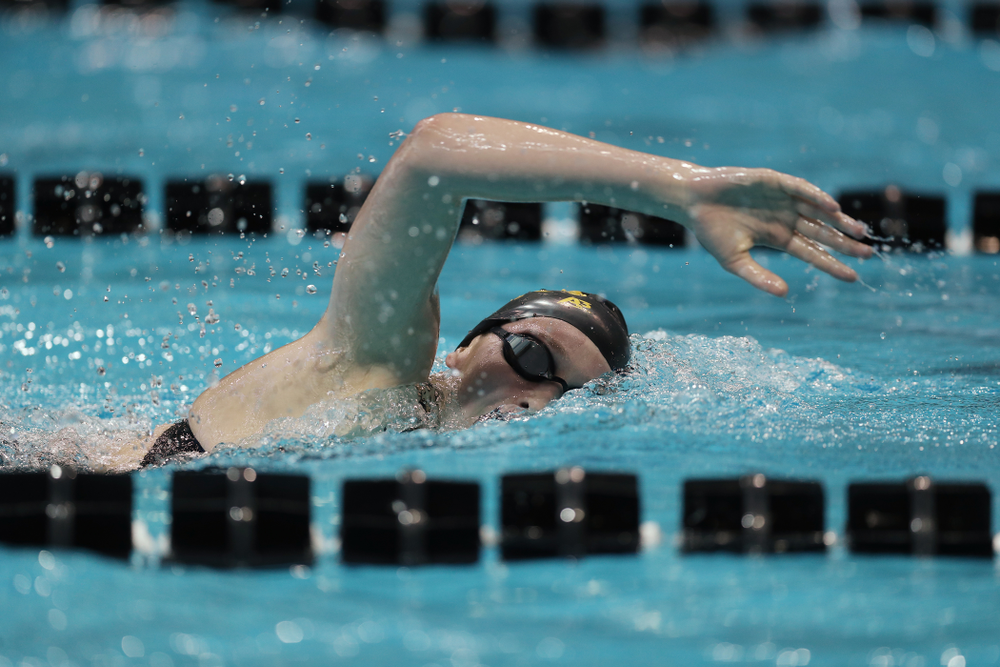 Iowa's Taylor Hartley swims the 500 yard freestyle Thursday, November 15, 2018 during the 2018 Hawkeye Invitational at the Campus Recreation and Wellness Center. (Brian Ray/hawkeyesports.com)