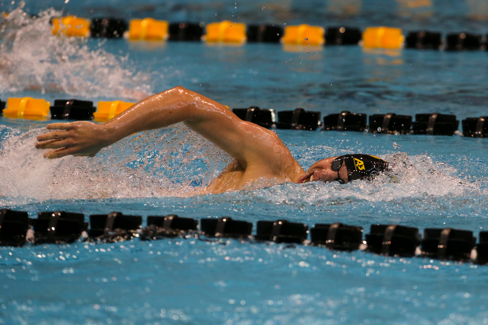 Iowa's Mateusz Arndt during Iowa swim and dive vs Minnesota on Saturday, October 26, 2019 at the Campus Wellness and Recreation Center. (Lily Smith/hawkeyesports.com)