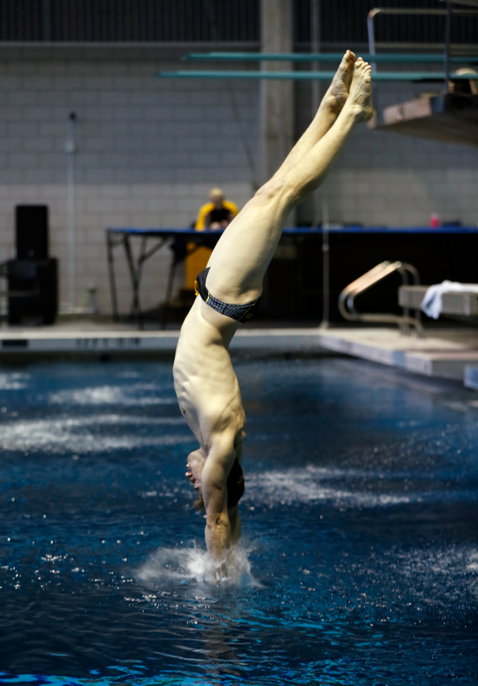 Saturday, January 13, 2018 (Brian Ray/hawkeyesports.com)Iowa's Will Brenner competes on the one meter springboard