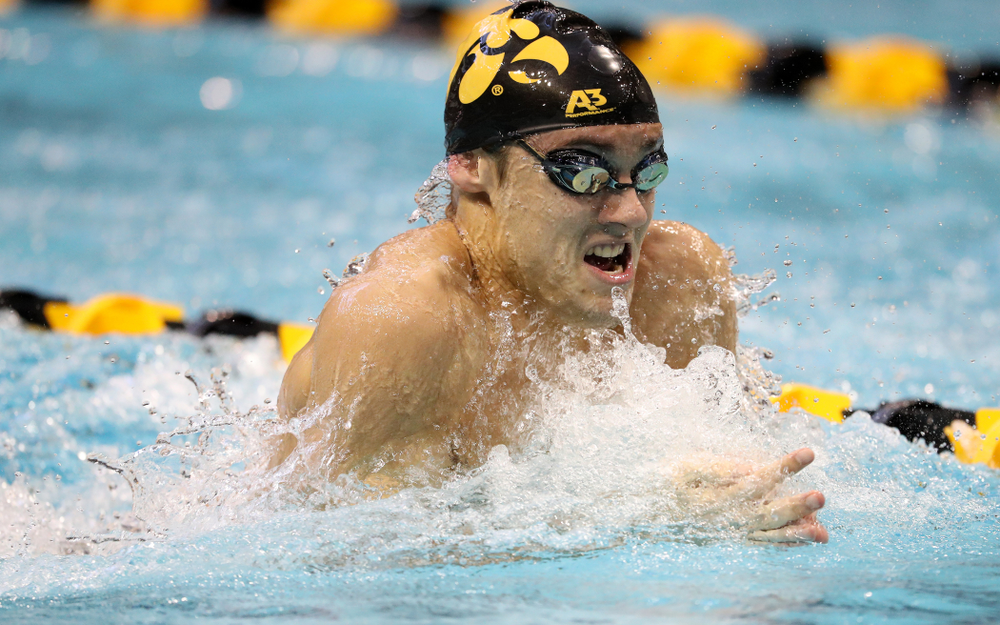 Iowa's Daniel Swanepoel swims the breaststroke leg of the 200 yard medley relay during a double dual against Wisconsin and Northwestern Saturday, January 19, 2019 at the Campus Recreation and Wellness Center. (Brian Ray/hawkeyesports.com)