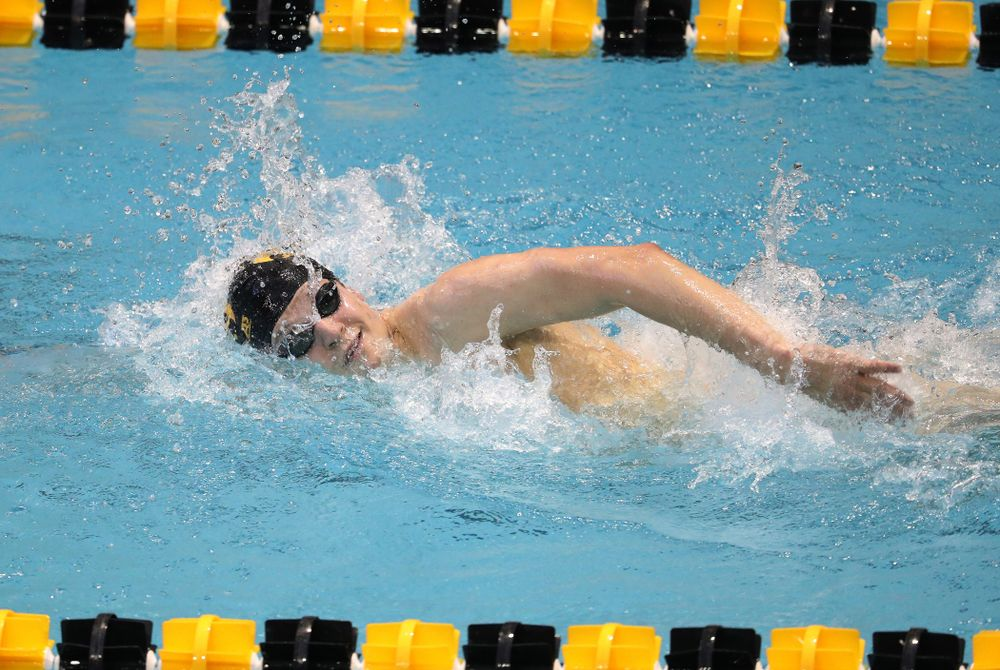 Iowa's Ben Colin swims the 1000 yard freestyle during a double dual against Wisconsin and Northwestern Saturday, January 19, 2019 at the Campus Recreation and Wellness Center. (Brian Ray/hawkeyesports.com)