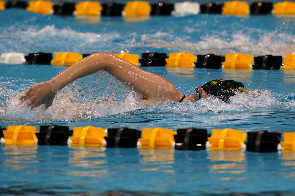 Iowa's Allyssa Fluit during Iowa swim and dive vs Minnesota on Saturday, October 26, 2019 at the Campus Wellness and Recreation Center. (Lily Smith/hawkeyesports.com)