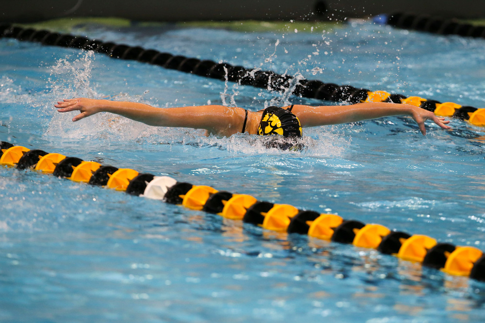 Iowa's Christina Kaufman during Iowa swim and dive vs Minnesota on Saturday, October 26, 2019 at the Campus Wellness and Recreation Center. (Lily Smith/hawkeyesports.com)