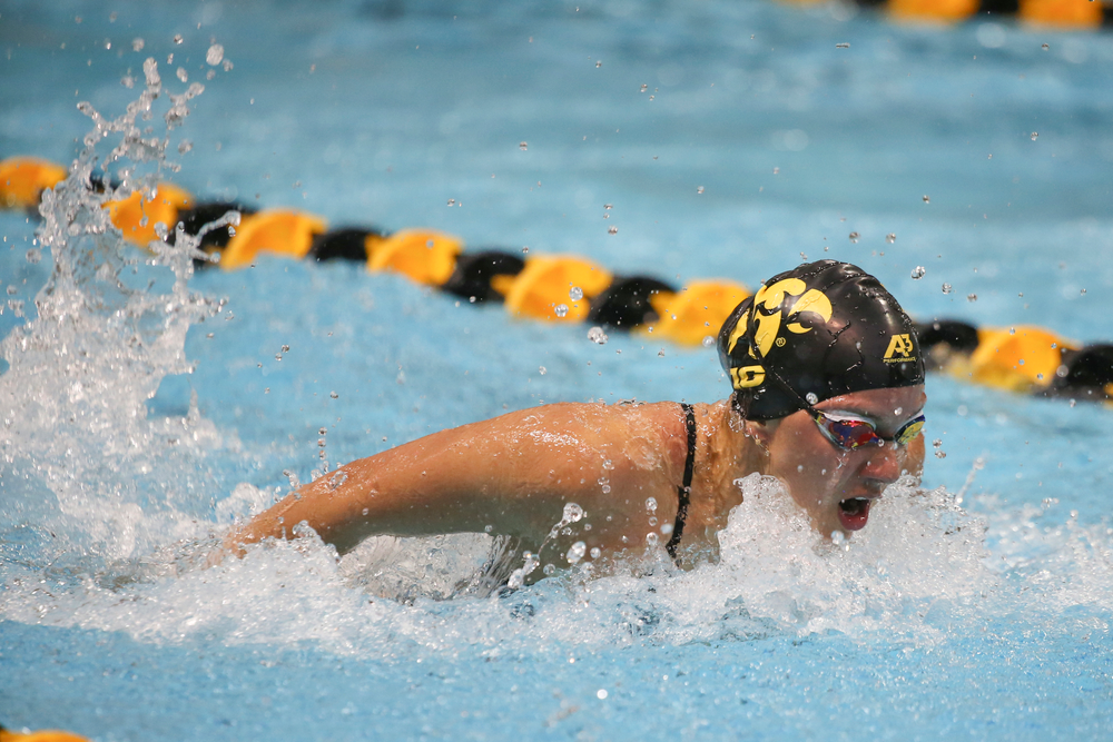 Iowa's Christian Kauffman swims the 200-yard butterfly during the Iowa swimming and diving meet vs Notre Dame and Illinois on Saturday, January 11, 2020 at the Campus Recreation and Wellness Center. (Lily Smith/hawkeyesports.com)