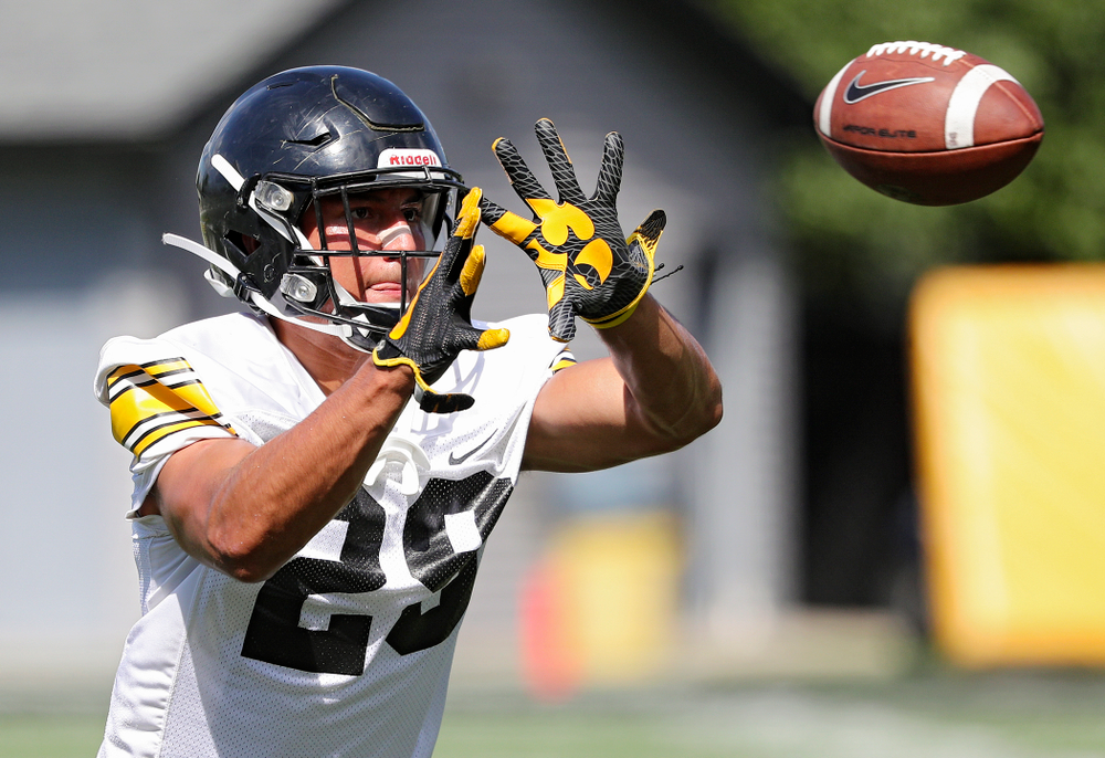 Iowa Hawkeyes defensive back Sebastian Castro (29) pulls in a pass as they run a drill during Fall Camp Practice No. 13 at the Hansen Football Performance Center in Iowa City on Friday, Aug 16, 2019. (Stephen Mally/hawkeyesports.com)