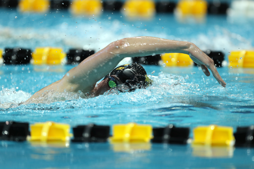 Iowa's Allyssa Fluit swims the 500 yard freestyle Thursday, November 15, 2018 during the 2018 Hawkeye Invitational at the Campus Recreation and Wellness Center. (Brian Ray/hawkeyesports.com)