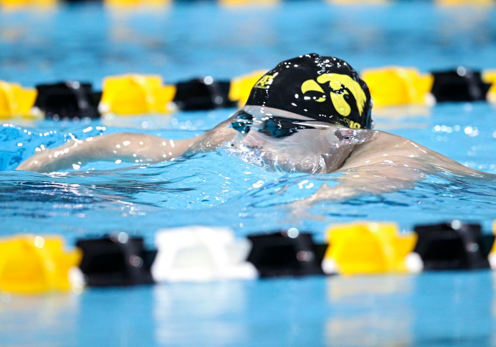 Iowa's William Myhre swims the breaststroke section in the men's 400 yard medley relay event during their meet at the Campus Recreation and Wellness Center in Iowa City on Friday, February 7, 2020. (Stephen Mally/hawkeyesports.com)