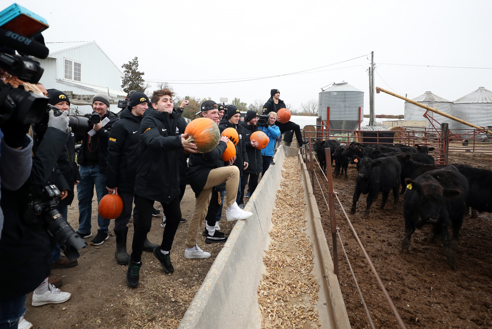 Members of the Iowa Wrestling team throw pumpkins into the cow pen during the teamÕs annual media day Wednesday, October 30, 2019 at Kroul Family Farms in Mount Vernon. (Brian Ray/hawkeyesports.com)