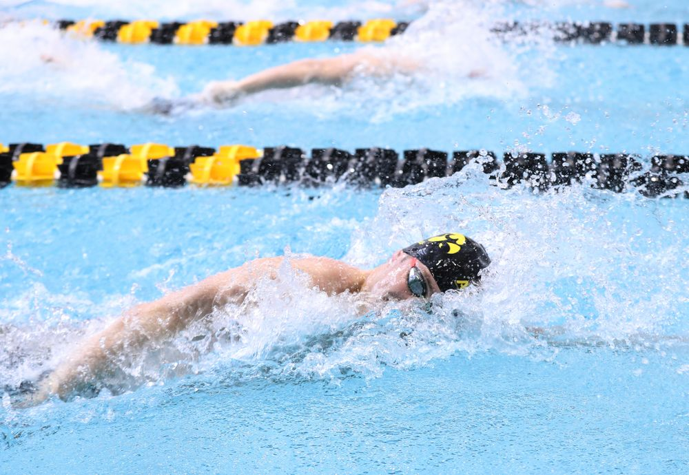 Iowa's Jack Smith competes in the 100-yard freestyle during the 2019 Big Ten Men's Swimming and Diving Championships Saturday, March 2, 2019 at the Campus Wellness and Recreation Center. (Brian Ray/hawkeyesports.com)