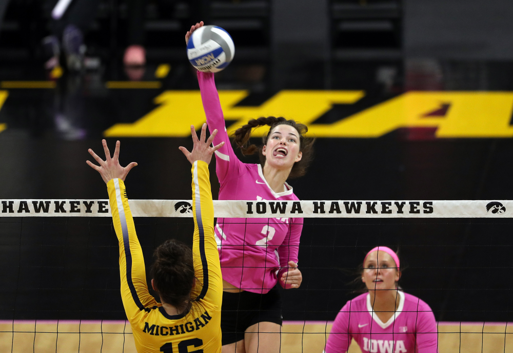 Iowa Hawkeyes setter Courtney Buzzerio (2) against the Michigan Wolverines Friday, October 11, 2019 at Carver-Hawkeye Arena.(Brian Ray/hawkeyesports.com)