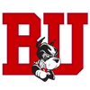 University of New Mexico Lobos athletics