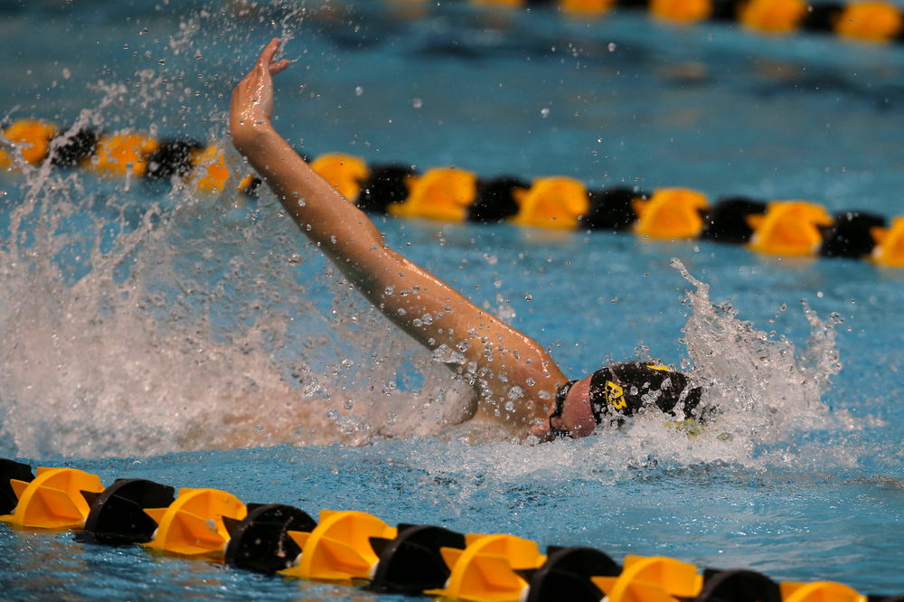 Iowa's Ariel Wooden during Iowa swim and dive vs Minnesota on Saturday, October 26, 2019 at the Campus Wellness and Recreation Center. (Lily Smith/hawkeyesports.com)
