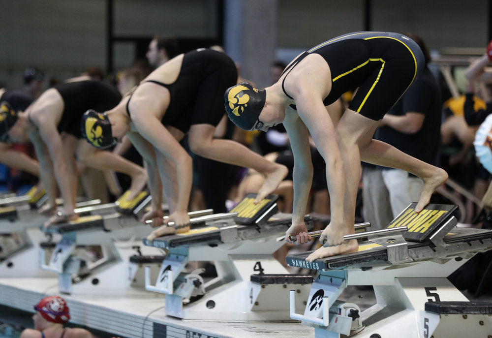Iowa's Samantha Sauer swims the 50 yard freestyle  Thursday, November 15, 2018 during the 2018 Hawkeye Invitational at the Campus Recreation and Wellness Center. (Brian Ray/hawkeyesports.com)