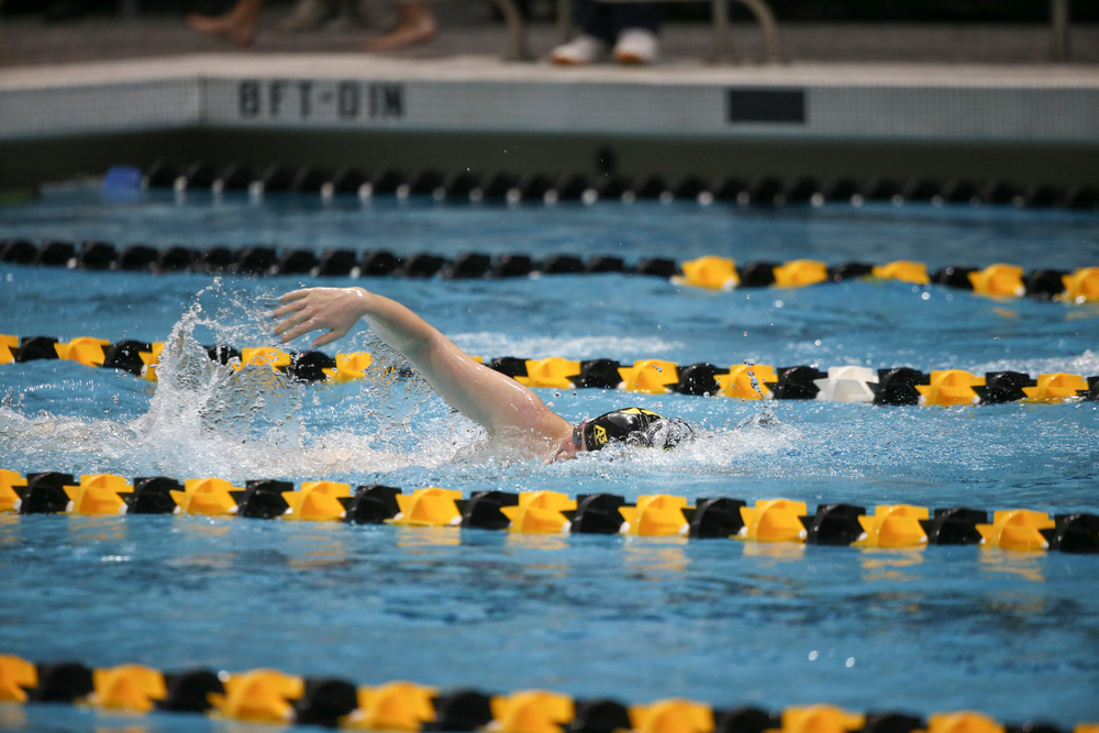Iowa's Erin Lang swims the 500-yard freestyle during the Iowa swimming and diving meet vs Notre Dame and Illinois on Saturday, January 11, 2020 at the Campus Recreation and Wellness Center. (Lily Smith/hawkeyesports.com)