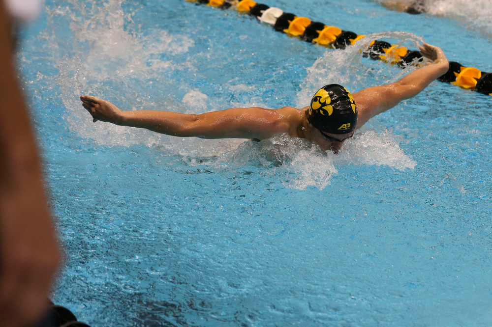 Iowa's Evan Holt during Iowa swim and dive vs Minnesota on Saturday, October 26, 2019 at the Campus Wellness and Recreation Center. (Lily Smith/hawkeyesports.com)