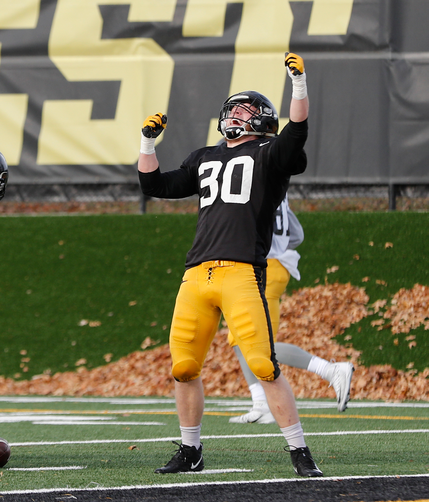 Iowa Hawkeyes defensive back Jake Gervase (30)