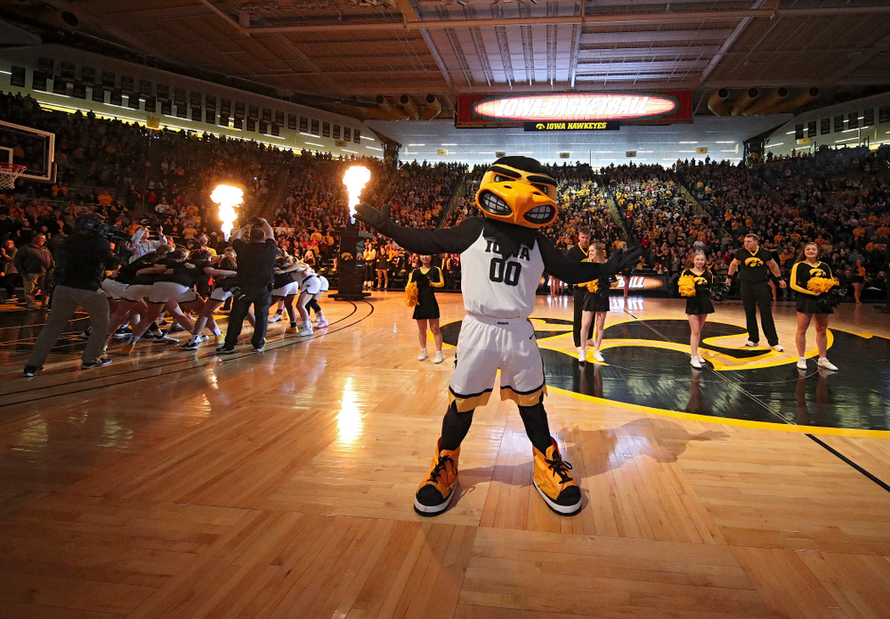 Herky on the court before the start of the game at Carver-Hawkeye Arena in Iowa City on Sunday, January 26, 2020. (Stephen Mally/hawkeyesports.com)
