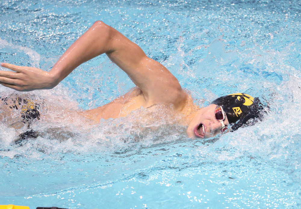 Iowa's Andrew Fierke swims the 1000 yard freestyle during a double dual against Wisconsin and Northwestern Saturday, January 19, 2019 at the Campus Recreation and Wellness Center. (Brian Ray/hawkeyesports.com)