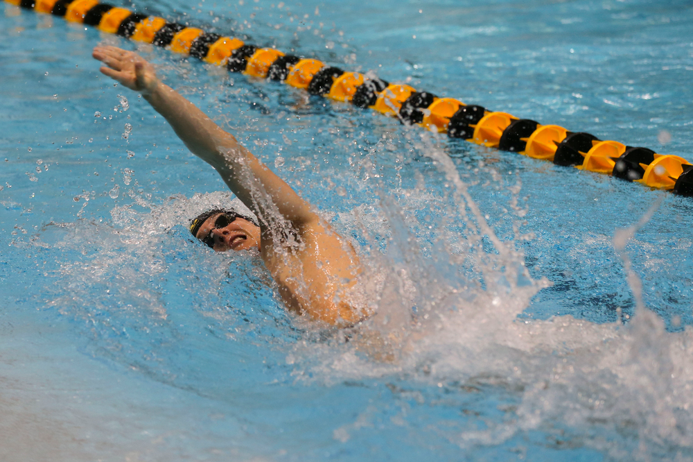 Iowa's Thomas Pederson during Iowa swim and dive vs Minnesota on Saturday, October 26, 2019 at the Campus Wellness and Recreation Center. (Lily Smith/hawkeyesports.com)