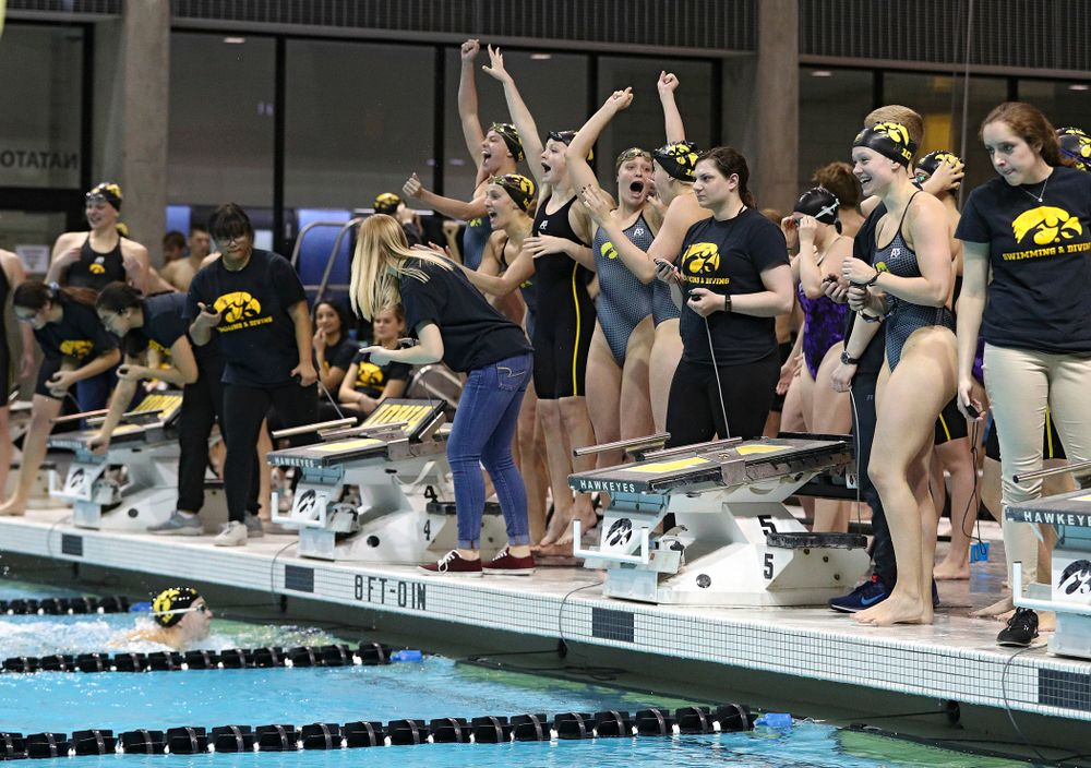 Iowa swimmers cheer during the women's 200 yard freestyle relay event during their meet at the Campus Recreation and Wellness Center in Iowa City on Friday, February 7, 2020. (Stephen Mally/hawkeyesports.com)
