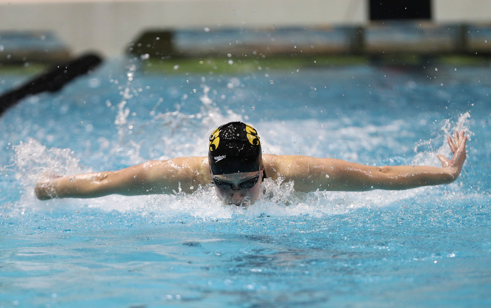 Iowa's Kelly McNamara competes in the 100-yard butterfly during the third day of the Hawkeye Invitational at the Campus Recreation and Wellness Center on November 16, 2018. (Tork Mason/hawkeyesports.com)