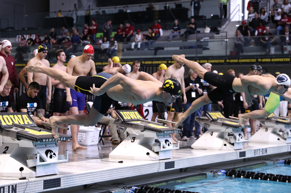 Iowa's Matt Kamin swims in the preliminaries of the 50-yard freestyle during the 2019 Big Ten Swimming and Diving Championships Thursday, February 28, 2019 at the Campus Wellness and Recreation Center. (Brian Ray/hawkeyesports.com)
