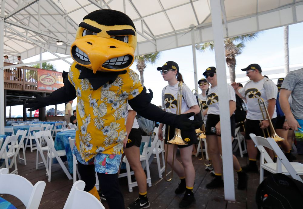 Herky and the Hawkeye Marching Band