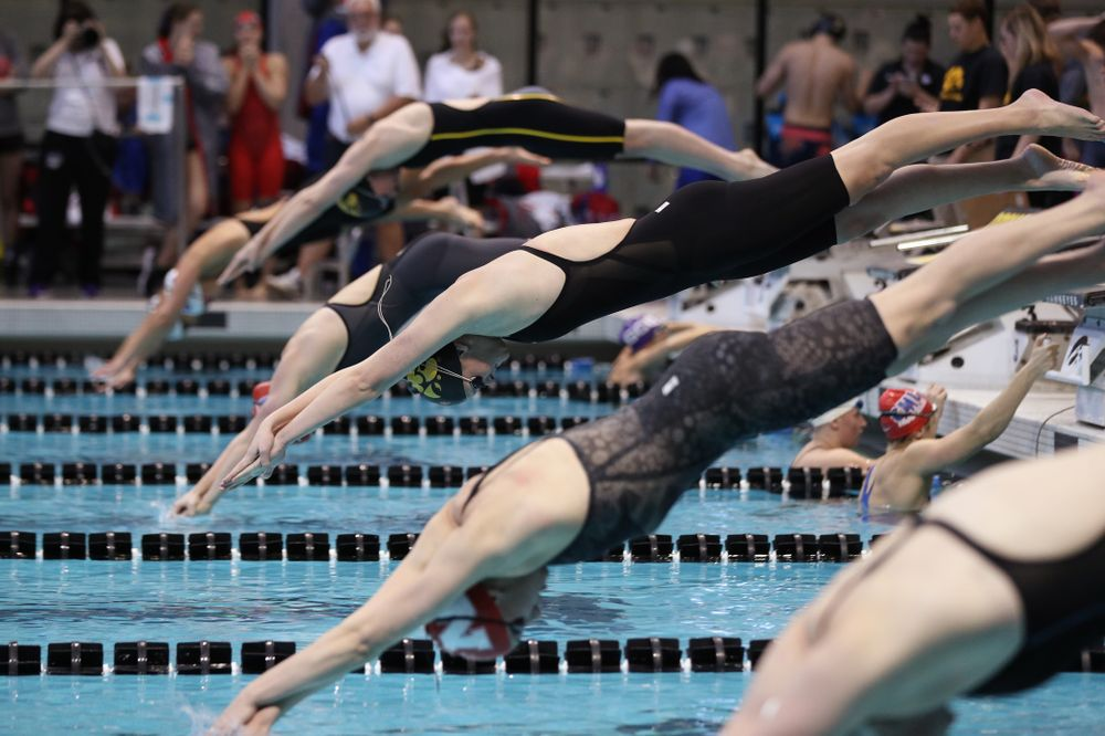 Iowa's Sarah Schemmel swims the 50 yard freestyle  Thursday, November 15, 2018 during the 2018 Hawkeye Invitational at the Campus Recreation and Wellness Center. (Brian Ray/hawkeyesports.com)