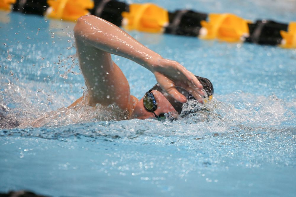 Iowa's Taylor Hartley swims the 1000-yard freestyle during the Iowa swimming and diving meet vs Notre Dame and Illinois on Saturday, January 11, 2020 at the Campus Recreation and Wellness Center. (Lily Smith/hawkeyesports.com)