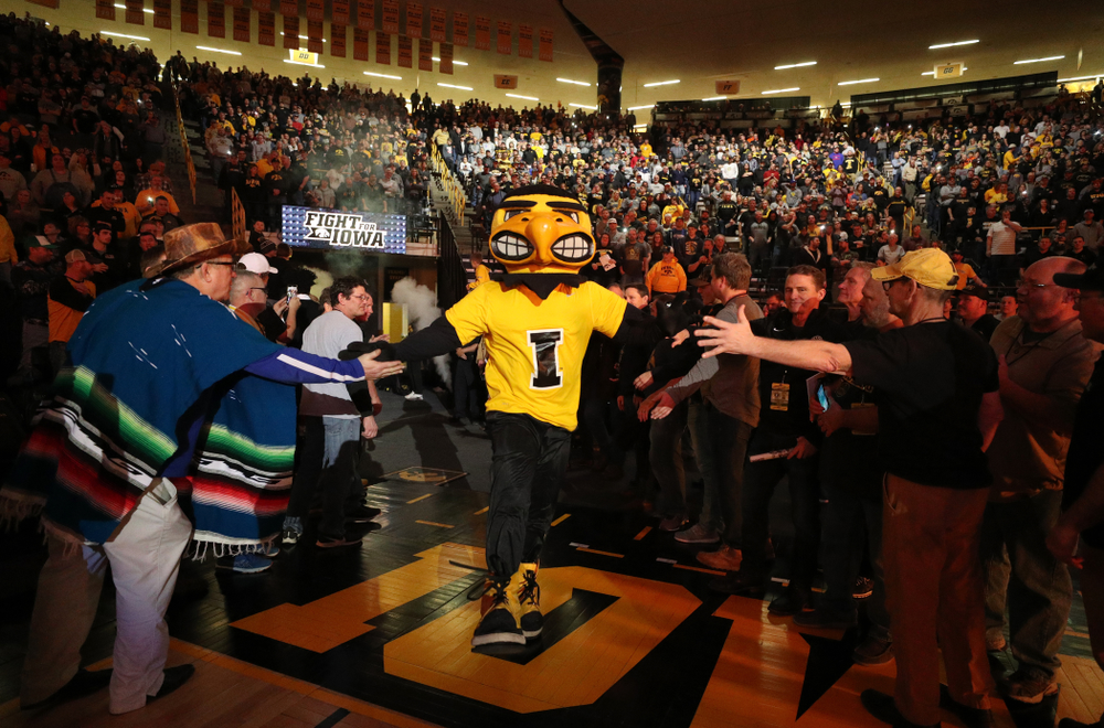 Herky runs through the alumni tunnel before the Iowa Hawkeyes meet against Oklahoma State's at pounds Sunday, February 23, 2020 at Carver-Hawkeye Arena. (Brian Ray/hawkeyesports.com)