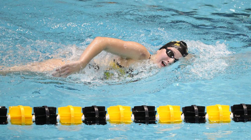 Iowa's Taylor Hartley swims the 1000 yard freestyle during a double dual against Wisconsin and Northwestern Saturday, January 19, 2019 at the Campus Recreation and Wellness Center. (Brian Ray/hawkeyesports.com)