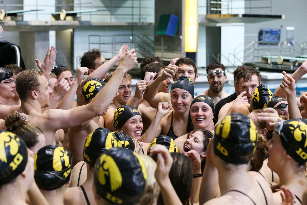 The Iowa Hawkeyes during Iowa swim and dive vs Minnesota on Saturday, October 26, 2019 at the Campus Wellness and Recreation Center. (Lily Smith/hawkeyesports.com)