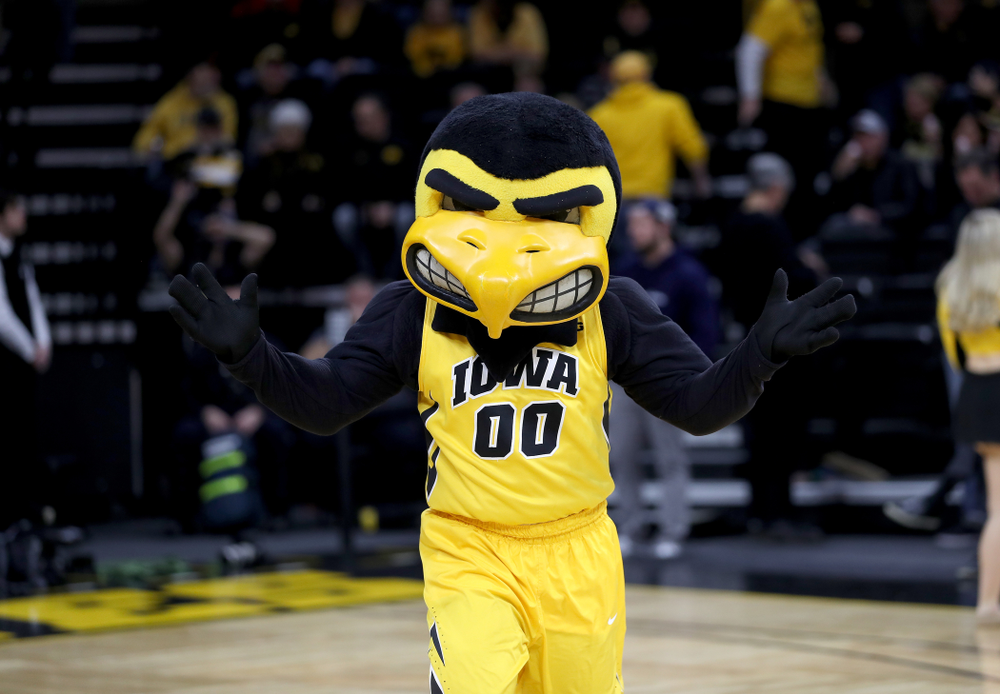 Herky The Hawk against the Nebraska Cornhuskers Saturday, February 8, 2020 at Carver-Hawkeye Arena. (Brian Ray/hawkeyesports.com)