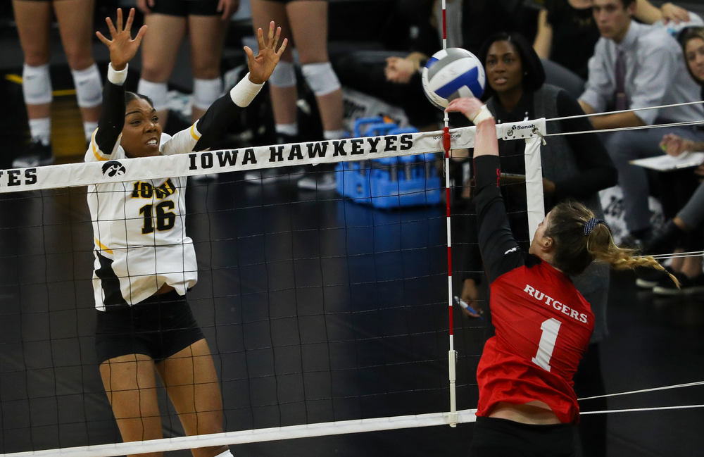 Iowa Hawkeyes outside hitter Taylor Louis (16) goes up for a block during a match against Rutgers at Carver-Hawkeye Arena on November 2, 2018. (Tork Mason/hawkeyesports.com)