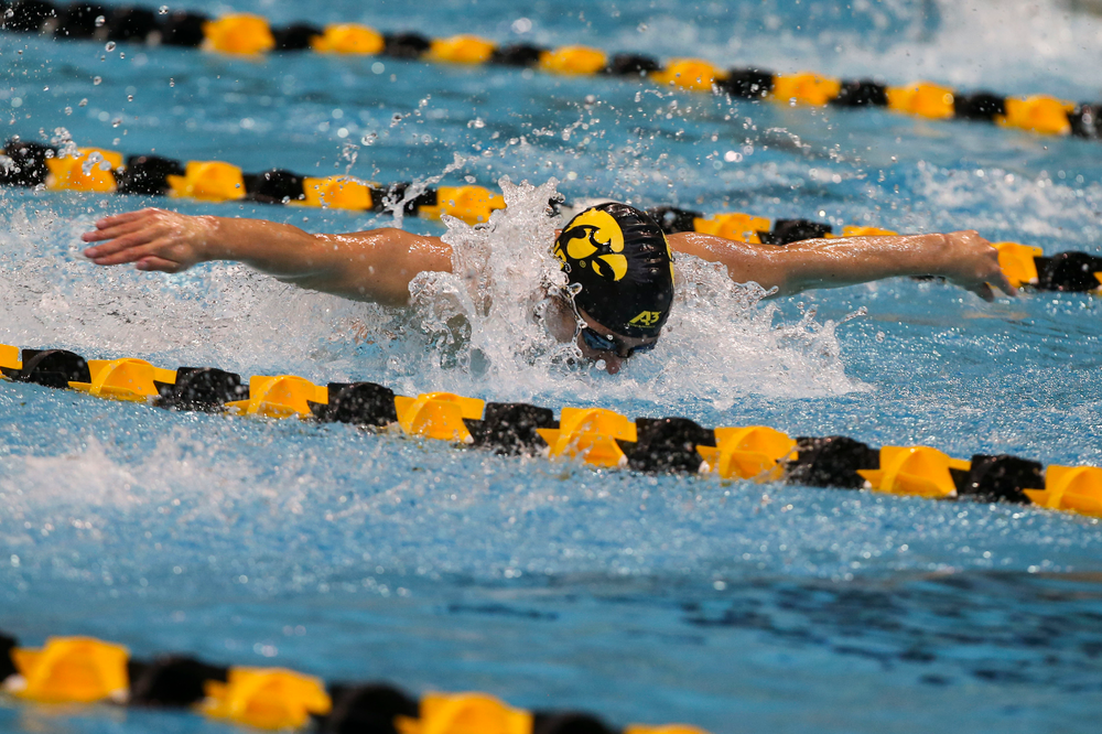 Iowa's Michael Tenney during Iowa swim and dive vs Minnesota on Saturday, October 26, 2019 at the Campus Wellness and Recreation Center. (Lily Smith/hawkeyesports.com)