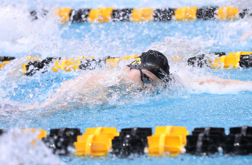 Iowa's Joseph Myhre competes in the 100-yard freestyle during the 2019 Big Ten Men's Swimming and Diving Championships Saturday, March 2, 2019 at the Campus Wellness and Recreation Center. (Brian Ray/hawkeyesports.com)