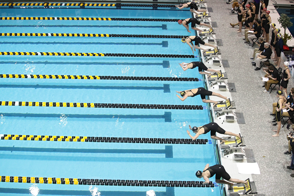 Iowa's Hannah Burvill dives into the pool to start off the 800 yard freestyle relay event during the 2020 Big Ten Women's Swimming and Diving Championships at the Campus Recreation and Wellness Center in Iowa City on Wednesday, February 19, 2020. (Stephen Mally/hawkeyesports.com)