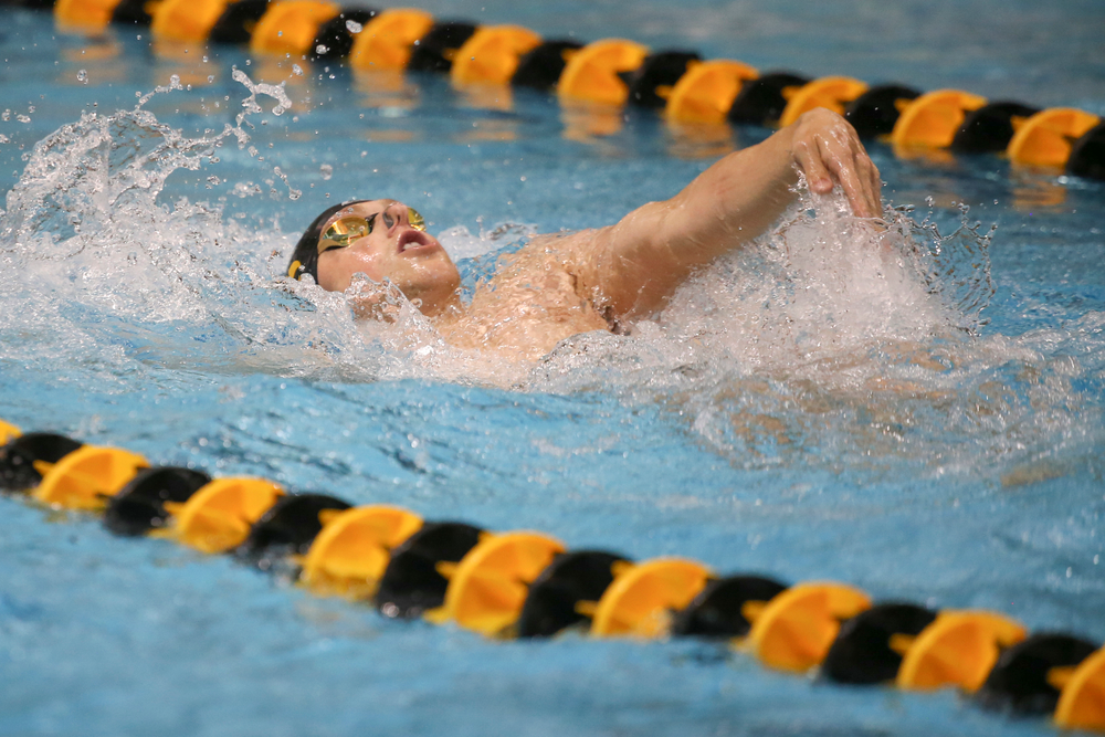 Iowa's John Colin swims the 200-yard backstroke during the Iowa swimming and diving meet vs Notre Dame and Illinois on Saturday, January 11, 2020 at the Campus Recreation and Wellness Center. (Lily Smith/hawkeyesports.com)
