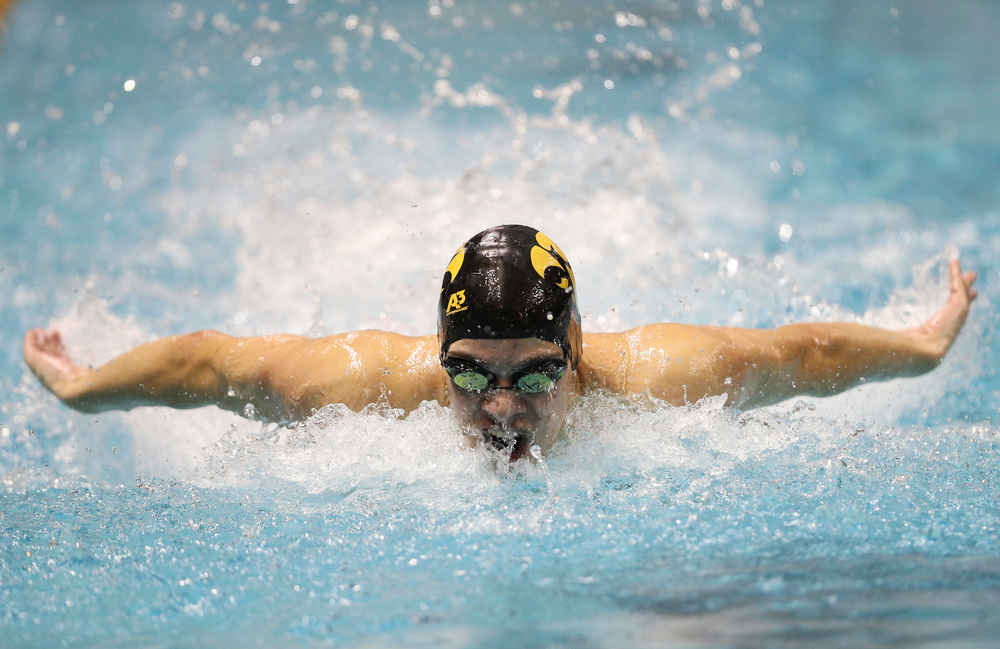 Iowa's Michael Brzus competes in the 100-yard butterfly during the third day of the Hawkeye Invitational at the Campus Recreation and Wellness Center on November 16, 2018. (Tork Mason/hawkeyesports.com)