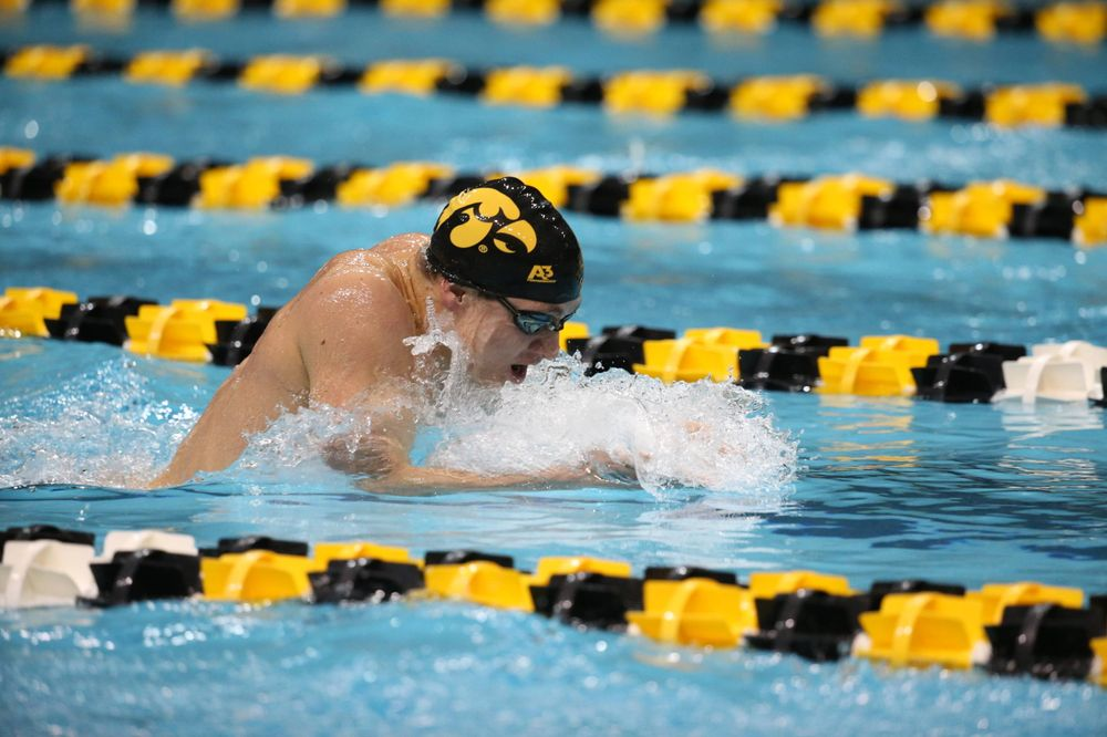 Iowa's Michael Tenney at the 400-yard medley race  Friday, March 1, 2019 at the Campus Recreation and Wellness Center. (Lily Smith/hawkeyesports.com)