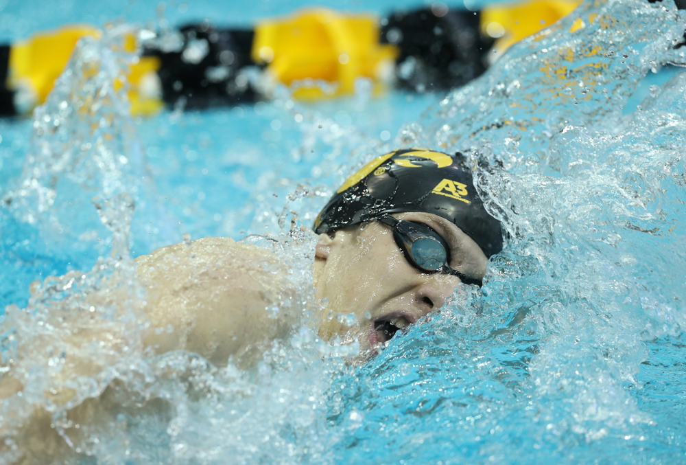 Iowa's Jackson Allmon swims the 500 yard freestyle Thursday, November 15, 2018 during the 2018 Hawkeye Invitational at the Campus Recreation and Wellness Center. (Brian Ray/hawkeyesports.com)