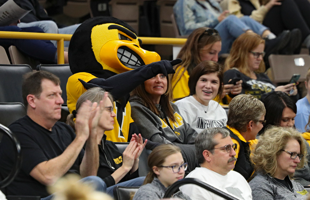 Herky sits with some fans during the second set of their volleyball match at Carver-Hawkeye Arena in Iowa City on Sunday, Oct 13, 2019. (Stephen Mally/hawkeyesports.com)
