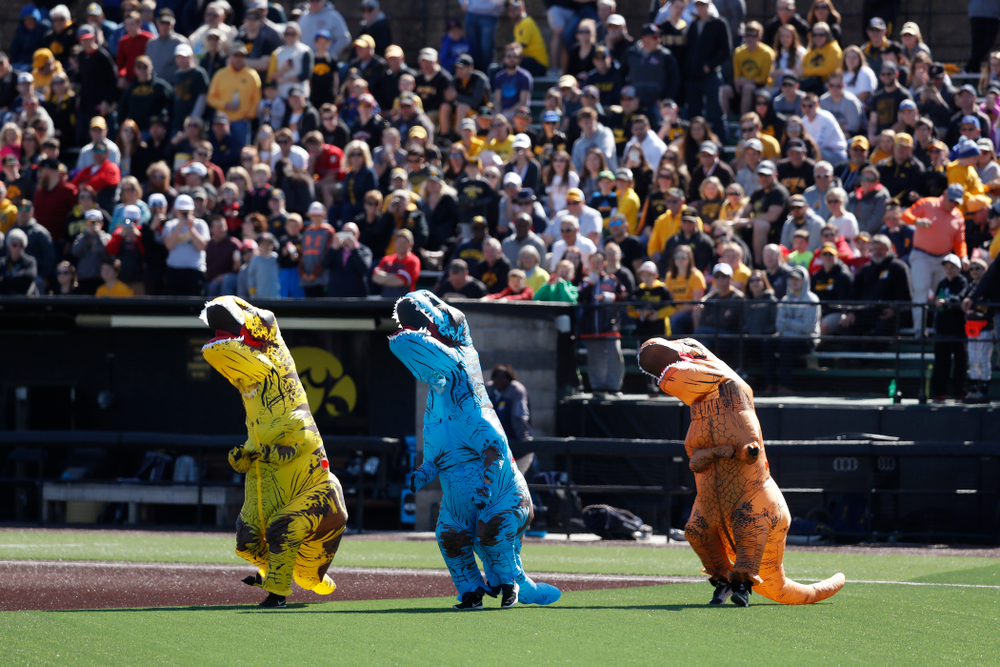 The dinosaur race as the Iowa Hawkeyes face off against Michigan Saturday, April 28, 2018 at Duane Banks Field (Brian Ray/hawkeyesports.com)
