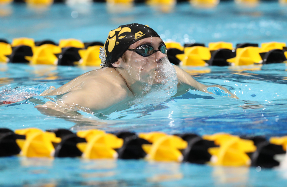 Iowa's Daniel Swanepoel swims the breaststroke leg of the 200 medley relay at the 2019 Big Ten Swimming and Diving meet  Wednesday, February 27, 2019 at the Campus Wellness and Recreation Center. (Brian Ray/hawkeyesports.com)
