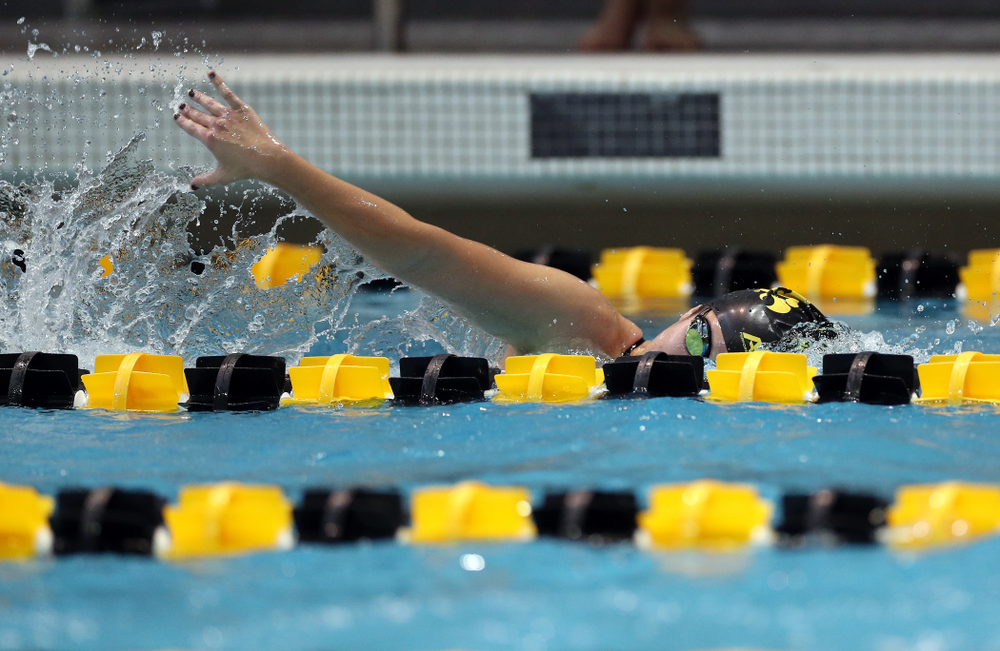 IowaÕs Helena Blumenau swims the 1,000 yard freestyle agains the Michigan Wolverines Friday, November 1, 2019 at the Campus Recreation and Wellness Center. (Brian Ray/hawkeyesports.com)
